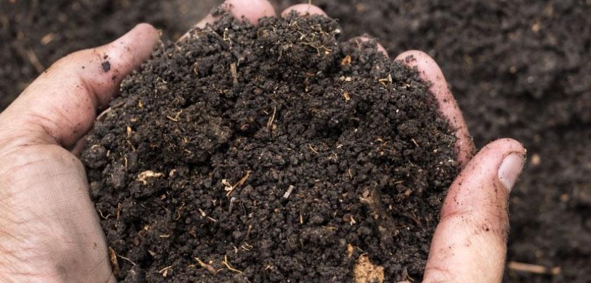G8全自动石墨消解仪消解土壤测定重金属解决案例
