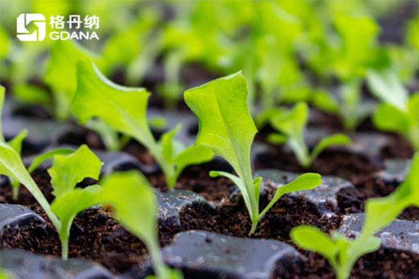 土壤消解温度、时间的精准把控—G8全自动石墨消解仪操作实例