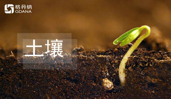 全自动石墨消解仪解决人力繁琐消解土壤研究